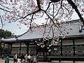 Ninna-ji National Treasure World heritage Kyoto 国宝・世界遺産 仁和寺 京都29.JPG