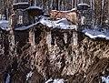 Nizhny Tagil, Sverdlovsk Oblast, Russia - panoramio (40).jpg