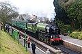 """No.60163 """"Tornado"""" Arrives at Medstead and Four Marks, Hampshire - geograph.org.uk - 1744990.jpg"""