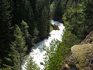 Nooksack River - Looking down at the raging North Fork Nooksack River from the Mount Baker Highway, which, at this location, sits atop a 200-foot cliff that drops almost straight into the river. This location is just upstream from Nooksack Falls.