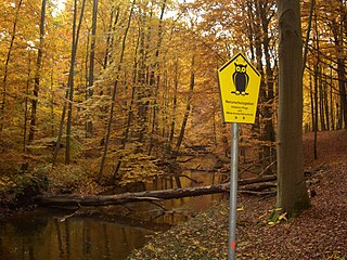 nature reserve in Germany, category of protected area within German Federal Conservation Law