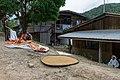 Nukakatan Sabah Drying-Rice-01.jpg