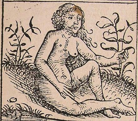ニュルンベルク年代記、ハートマン・シェデル(1440–1514)