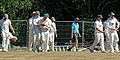 Nuthurst CC v. Henfield CC at Mannings Heath, West Sussex, England 044.jpg