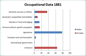 Belton, Leicestershire - Occupational data of both male and females in Belton during 1881