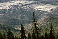 Ochoco Divide, Ochoco National Forest-2 (36594188235).jpg