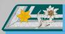 Offiziersstellvertreter k.k. Gebirgstruppe 1915-18.png