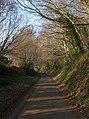 Old Dawlish Road - geograph.org.uk - 1219180.jpg