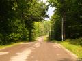 Old Highway 46.png