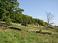 Old railway wagon in field, Brighouse - geograph.org.uk - 458929.jpg