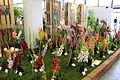 Olomouc, výstava Flora Olomouc 2013 (24).jpg