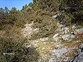 Orhaneli-Bursa, Turkey - panoramio (1).jpg