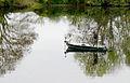 P1280934 Maine-et-Loire pecheur sur Mayenne rwk.jpg