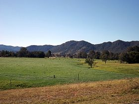 Paddocks 2 Mount Kilcoy Queensland.jpg