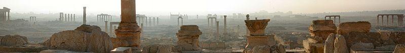 Palmira en el desierto