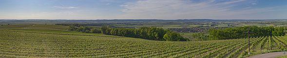 Panorama vom Aussichtsturm Sandberg, Platt (Gemeinde Zellerndorf), Weinviertel 6172.jpg