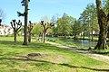 Parc municipal des Thermes à Forges-les-Bains le 5 mai 2016 - 06.jpg