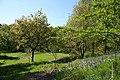 Park Wood, Ebchester - geograph.org.uk - 1301551.jpg