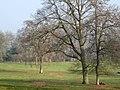 Parkland - East Coker - geograph.org.uk - 1097482.jpg