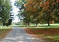 Parkland drive - geograph.org.uk - 1523627.jpg