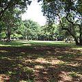 Parque do Ibirapuera 2014.jpg
