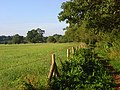 Pastures, Sonning - geograph.org.uk - 919665.jpg