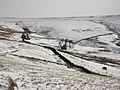 Pastures near Byerhopemere Head - geograph.org.uk - 754925.jpg