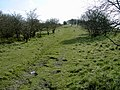 Path to Galley Hill - geograph.org.uk - 390556.jpg
