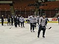 Penguins practice (7605894204).jpg
