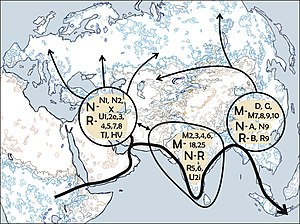 "Human mitochondrial DNA haplogroup - Suggested migratory route of the ""Out of Africa"" migration according to Mitochondrial DNA"