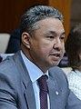 Peruashev (2015-11-11).jpg