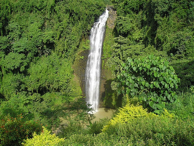 Alalum Falls in Bukidnon, Sumilao By Kleo Marlo Sialongo (Flickr) [CC BY
