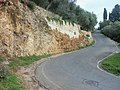 Pietrasanta, Province of Lucca, Italy - panoramio (4).jpg