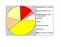 Pipestone Co Pie Chart No Text Version.pdf