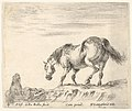 Plate 4- a horse in profile facing the left, about to descend from a mound, a horseman to left in background, from 'Diversi capricci' MET DP833175.jpg