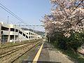 Platform of Sasaguri Station.jpg