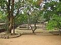 Polonnaruwa ruins (7567513996).jpg
