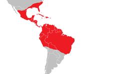 Polychrotidae - distribution.png