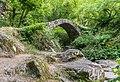Pont du Parayre 07.jpg