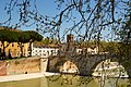Ponte Cestio 2013.jpg