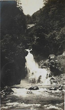 Postcard of Vintgar Gorge 1920s