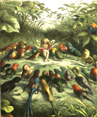 How to plan an open-air concert in Fairyland, by Richard Doyle
