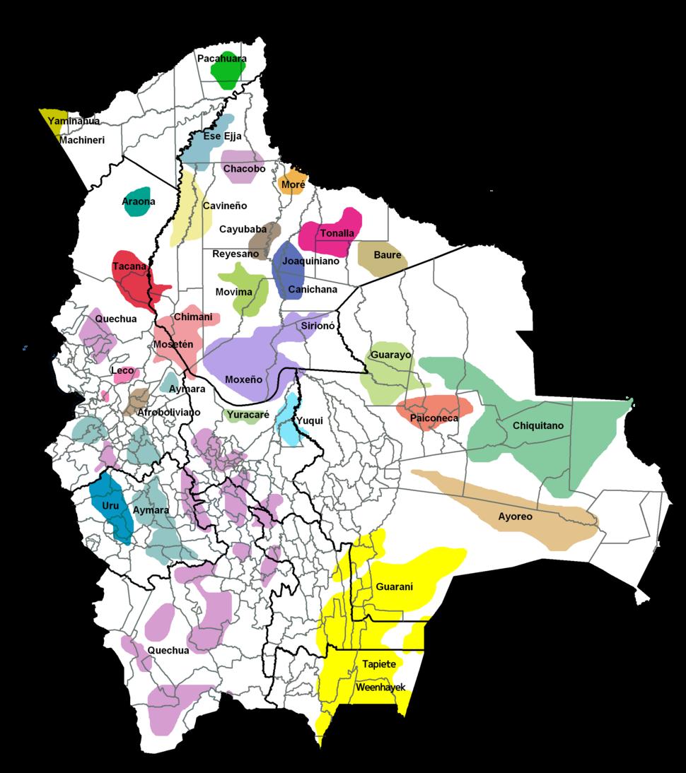 Pueblos originarios de Bolivia
