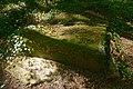 Puits aux Granges forêt de Dourdan.jpg