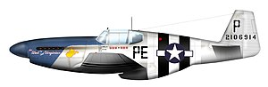 "113th Operations Group - P-51B of 352d FG/328th FS pilot, Lt. Robert ""Punchy"" Powell"
