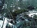 Río Nevado en Lozoya - panoramio.jpg