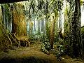 RBCM - Diorama Dry Coastal Forest.jpg