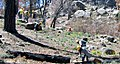 Reforestation-supervisor (6351084443).jpg