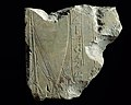 Relief Fragment with a Ship Under Sail MET DT256967.jpg