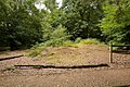 Remains of bronze-age barrow on Netley Common - geograph.org.uk - 1402784.jpg
